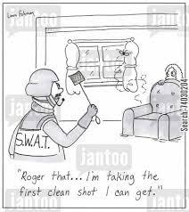 wasp swat (2)